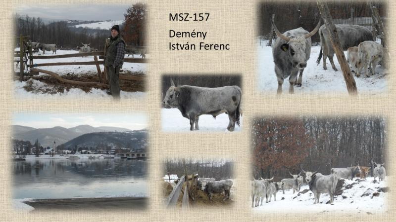 MSZ-157 Demény István Ferenc