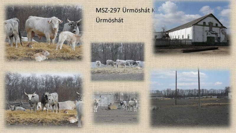 MSZ297 Ürmöshát Kft