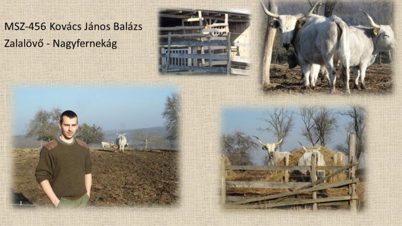 MSZ456_Kovacs Janos Balazs