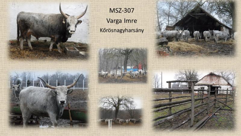 MSZ-307 Varga Imre