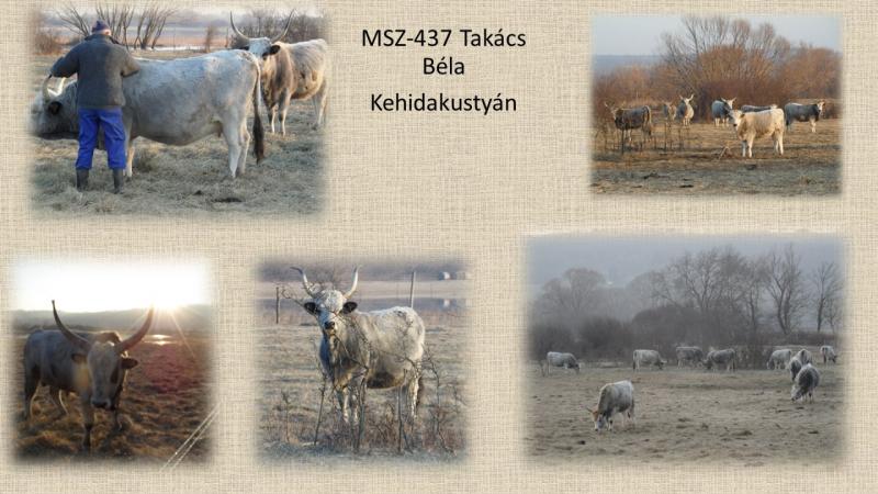 MSZ437_Takács Bela