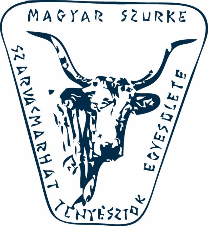 MSzTE 2012 számviteli beszámoló és közhasznúsági jelentés