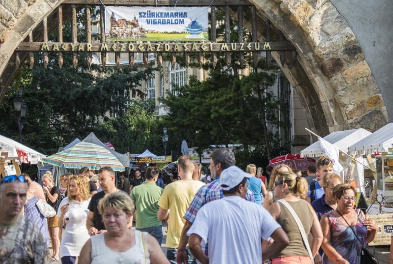 V. Szürkemarha Vigadalom - Gasztronómiai és Kulturális Fesztivál